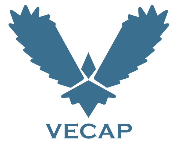 the vecap icon